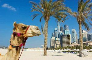 Виза в Дубай – нужна или нет?